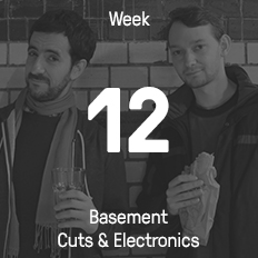Week 12 / 2015 - Basement Cuts & Electronics