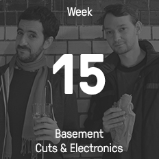 Week 15 / 2015 - Basement Cuts & Electronics