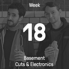 Week 18 / 2015 - Basement Cuts & Electronics