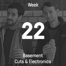 Week 22 / 2015 - Basement Cuts & Electronics