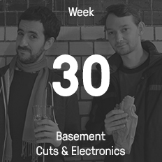Week 30 / 2015 - Basement Cuts & Electronics