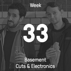 Week 33 / 2015 - Basement Cuts & Electronics