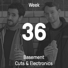 Week 36 / 2015 - Basement Cuts & Electronics