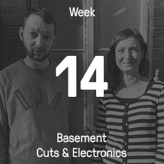 Week 14 / 2016 - Basement Cuts & Electronics