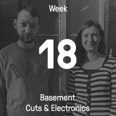 Week 18 / 2016 - Basement Cuts & Electronics