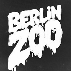 Berlin Zoo - HHV Mag Artist & Partner Vinyl Charts of 2017